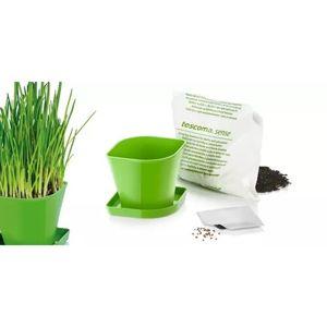 Tescoma Súprava pre pestovanie byliniek SENSE, pažítka 899062.00